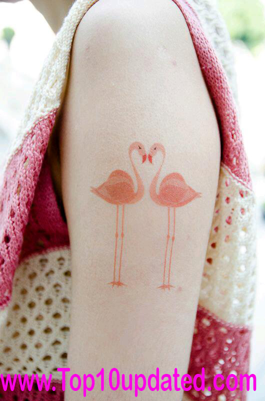 Top 10 Simple Leg And Arm Tattoos Designs For Girls | Girls Tattoos Designs Ideas | Wild Tattoos Designs - Top 10 Updated,Simple Leg Tattoos Designs for girls,Girls Wild Tattoos Designs,Simple Arm Tattoo Ideas,Cat Tattoo Designs For Girls,Bicycle Tattoo Designs For Girls,Arm Designs Ideas For Girls,Cat Body Designs Ideas For Girls,Leg Simple Tattoo Ideas,Arm Girls Wild Tattoos,