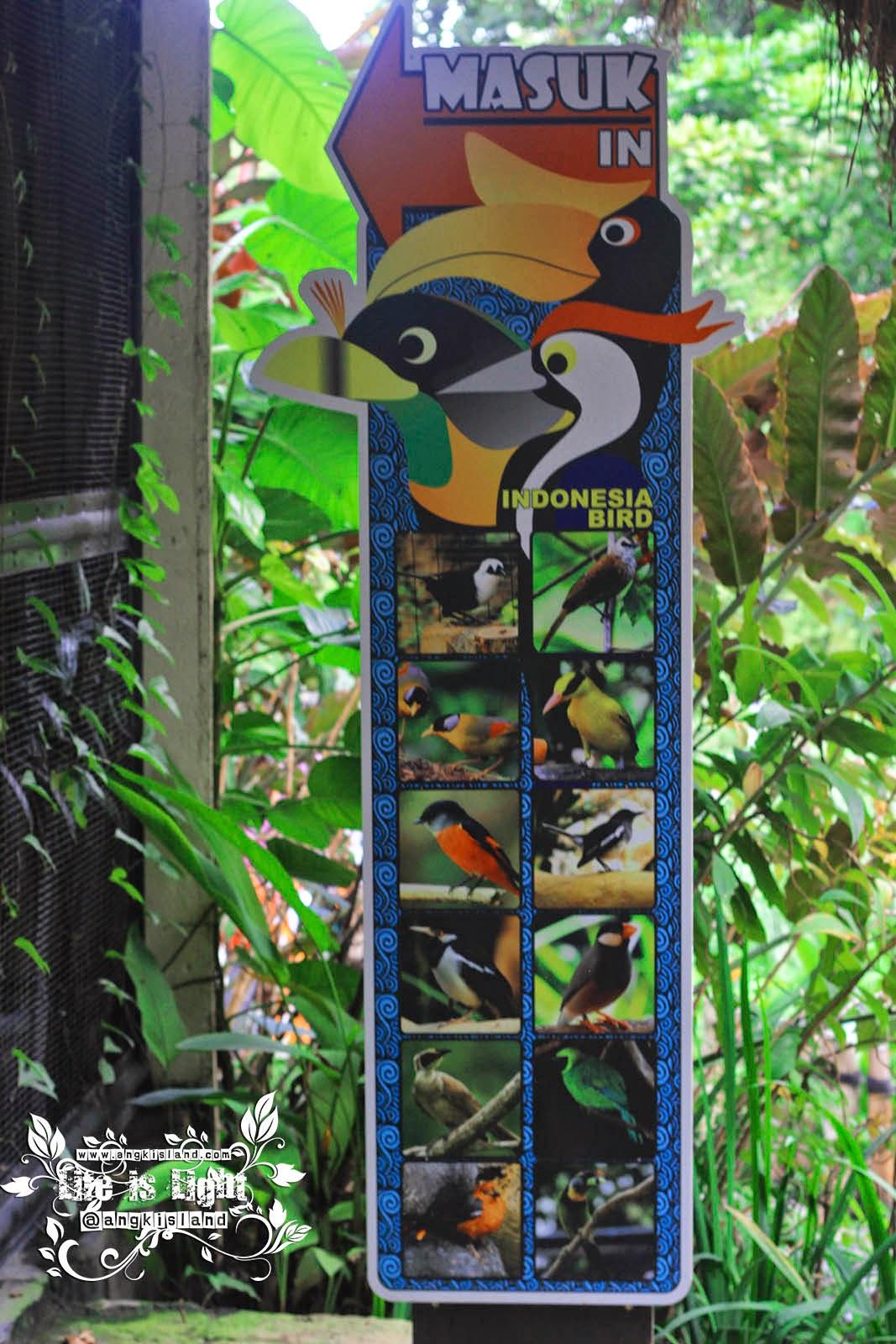 bird Gembiraloka