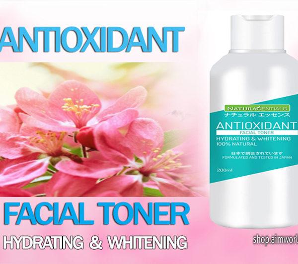 Antioxidant facial toner