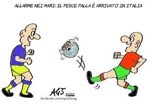 pesce palla, global warming, cambiamenti climatici, vignetta, satira