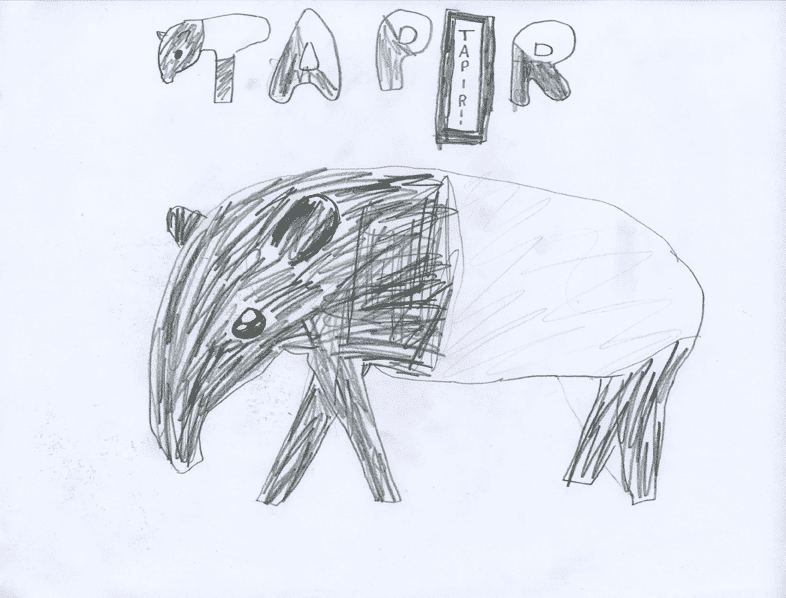 Free coloring pages of tepig to colour pic for Tapir coloring page