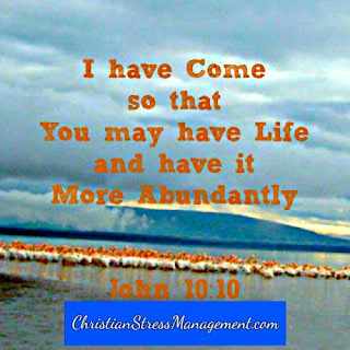 I have come so that you may have life and have it more abundantly John 10:10