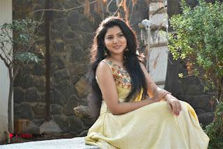 Actress Nayana Nair Stills in Long Dress at Arasakulam Tamil Movie Audio Launch  0013.jpg