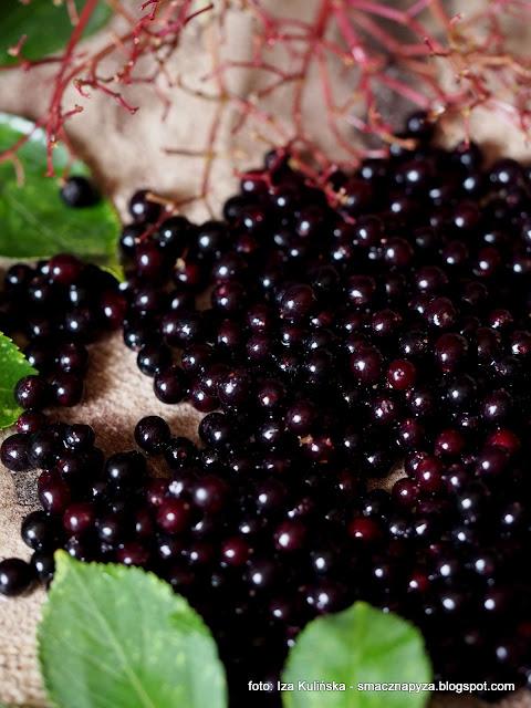 czarny bez, dziki bez, koktajl owocowy z kawa zbozowa, kawa inka, sniadanie, samo zdrowie, witaminy, rosliny lecznicze
