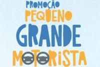 Promoção Pequeno Grande Motorista pequenograndemotorista.com.br