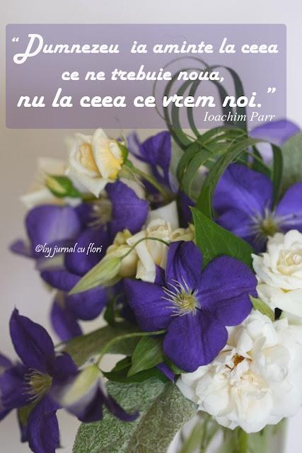 citat pe poza flori Ioachim Parr Dumnezeu voia noastra