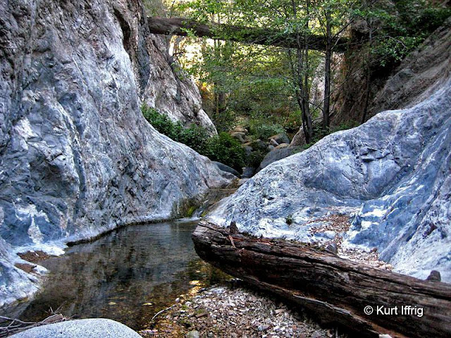 Eaton Canyon was carved by centuries of flash floods. Note the ancient log suspended high above the canyon floor.