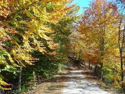 Via Verde de la Sierra de la Demanda (ferrocarril minero)