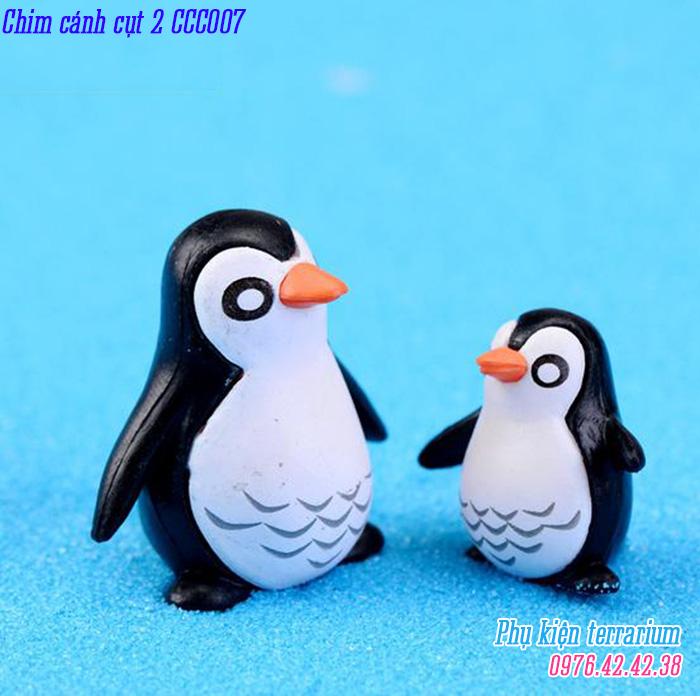 Chim canh cut 2CCC007
