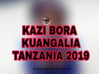 Best Five (5) Jobs To Watch Tanzania 2019 | Ajira Tips 2019