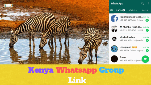 90+ Best Kenya Whatsapp Group Link List
