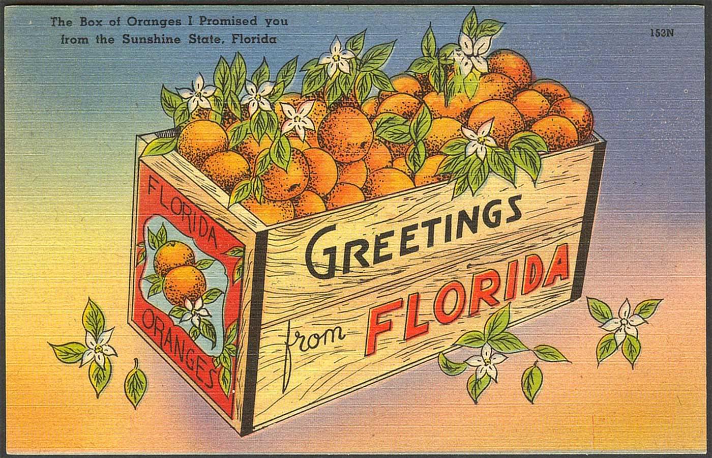 Duchess Fare Florida Bound