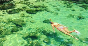 Lagoa Verde - Ilha Grande (Angra dos Reis/RJ)
