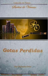 "2011- My first book  ""Gotas perdidas"" Poetry collection of ""Summer dreams"" (México)"
