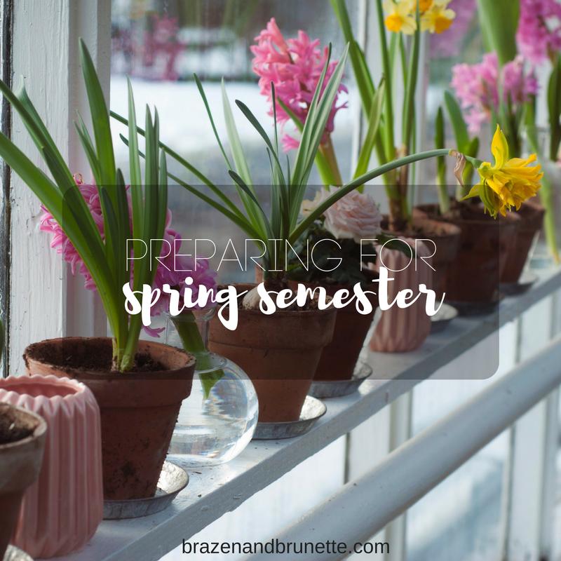 Preparing for spring semester brazen and brunette law for Preparing for spring