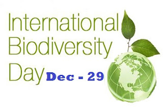 International Biodiversity Day - December 29