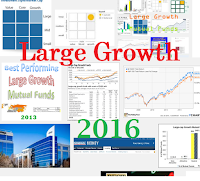 Best Large Growth Stock Mutual Funds in 2016