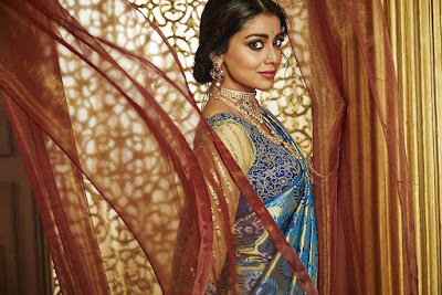 Cute Looking Shriya Saran in Sarees