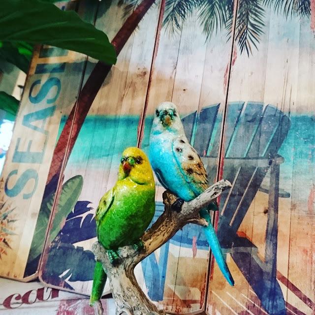 הגלריה המקסיקנית המקום לעיצוב הבית