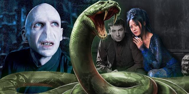 Волдемор, Наджини и Кридънс