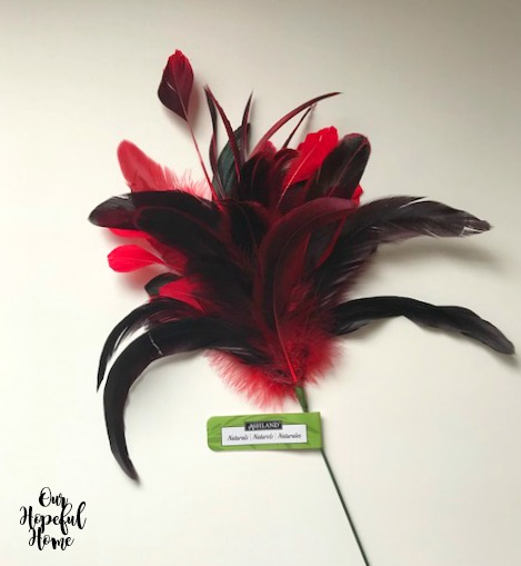 red black feathers rooster coque tail craft