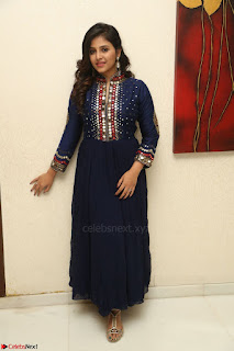 Anjali looks super cute at Chitrangada Pre Release Function March 2017 050.JPG