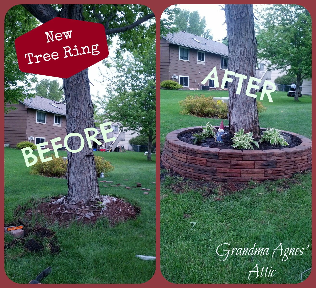 Caping Landscaping Ideas Around Trees Pictures