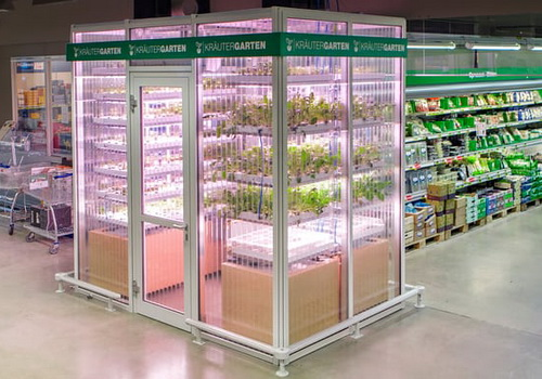 Tinuku Infarm builds agriculture using machine learning in grocery stores