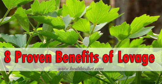8 Proven Benefits of Lovage