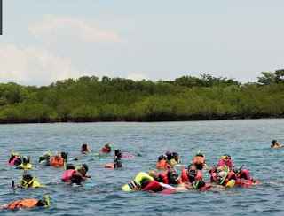 http://www.teluklove.com/2017/03/daya-tarik-objek-wisata-hiu-di-denpasar.html