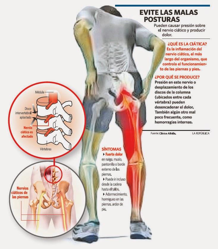 Nervios de la pierna y el pie