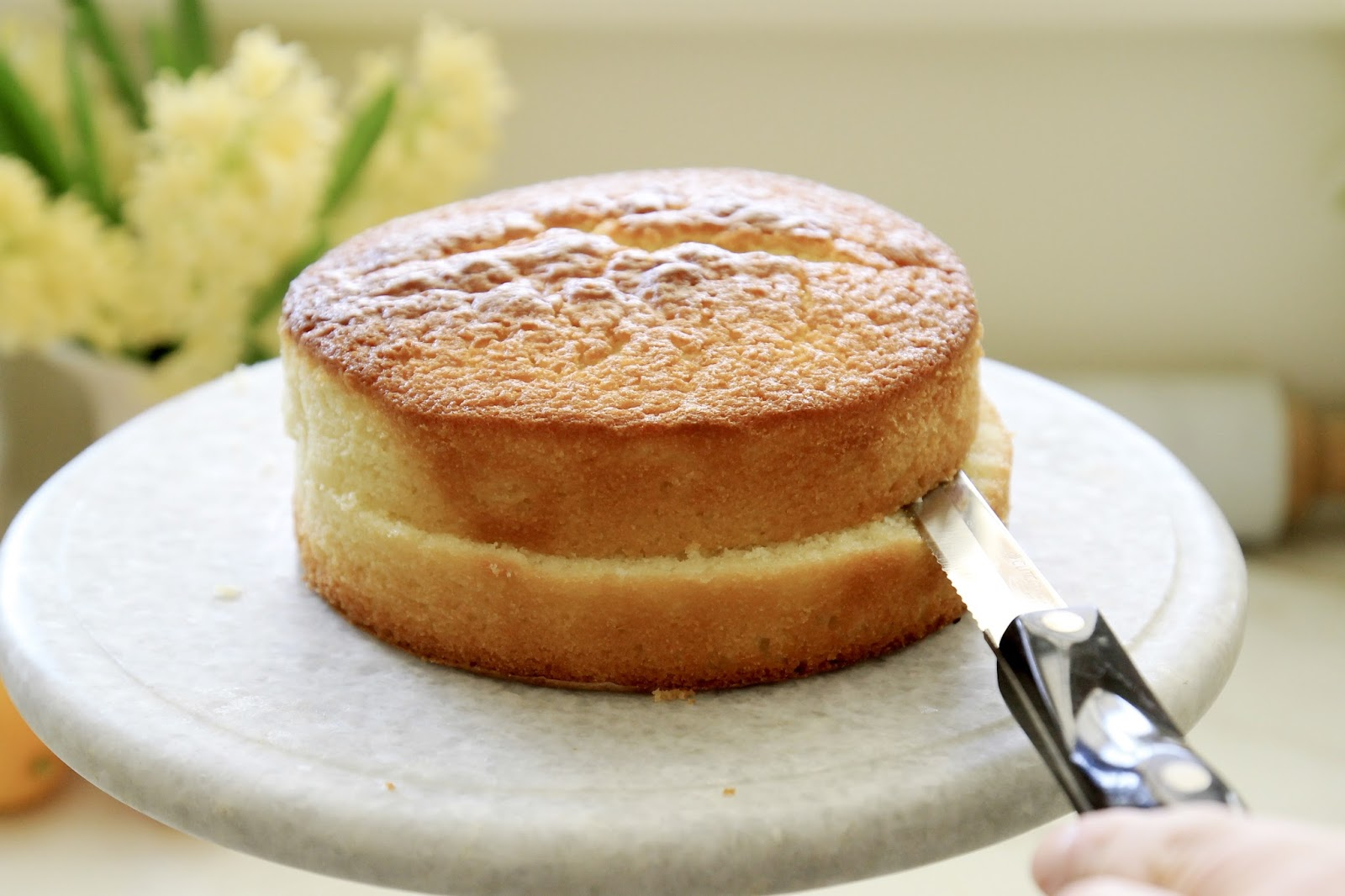 Cake Pan That Lifts Out