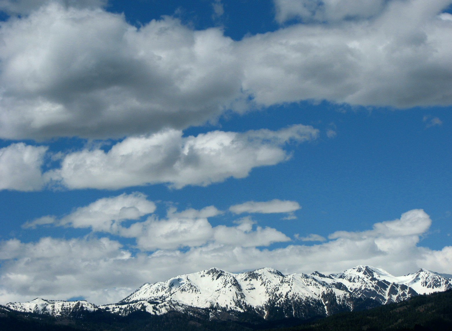 Pictures Of Scientific Forms Of Clouds 3