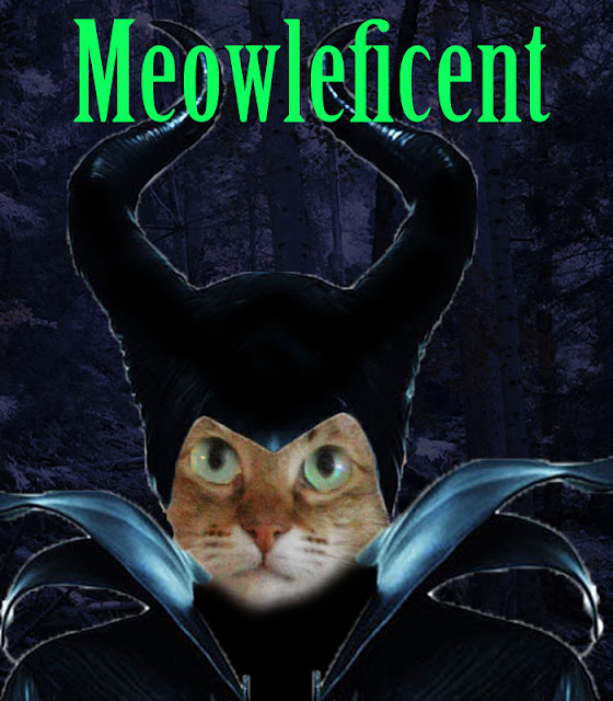 meowleficent maleficent als katze cat photoshop funny