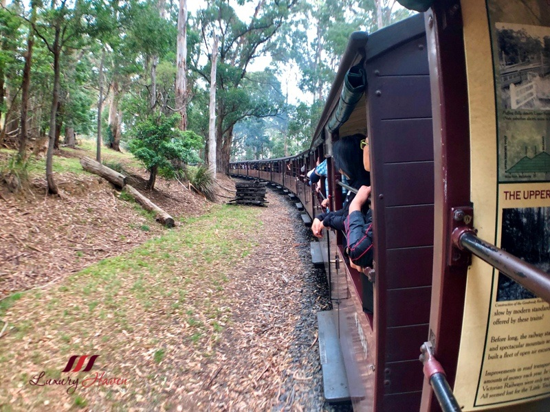 gray line australia puffing billy blue dandenong ranges