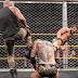 Cobertura: WWE NXT 19/12/18 - #DIY Reunion