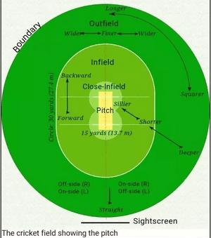 Lapangan Kriket