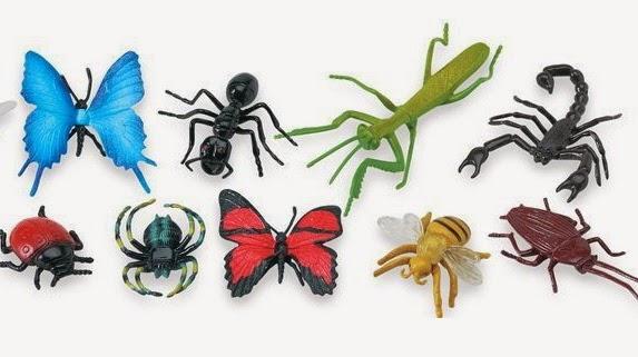 حشرات وزواحف - تعليم الانجليزية بسهولة