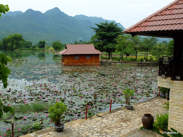 vietnam voyage 15jours mai chau nord montagne riziere hotel lodge