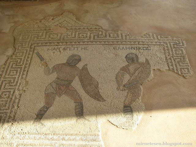 Курион - мозаика в Доме гладиаторов