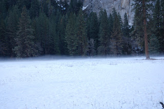 snow meadow Yosemite