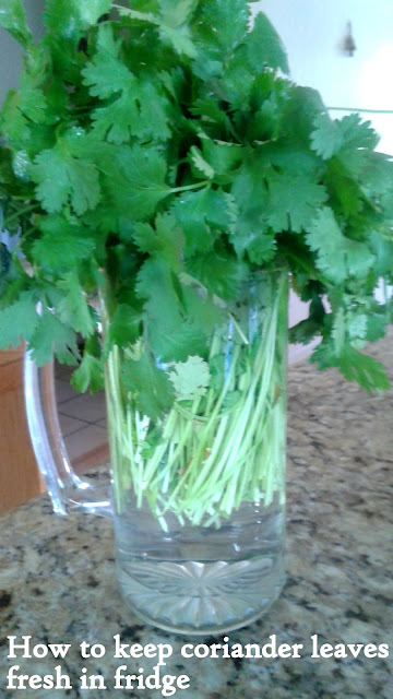images of How to keep coriander leaves fresh in fridge / How to keep cilantro fresh.