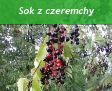 http://psprzelotem.blogspot.com/2015/10/dziko-rosnace-owoce-jadalne-jesien-sok.html