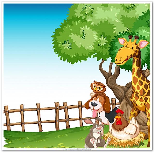 Kids Wild animals