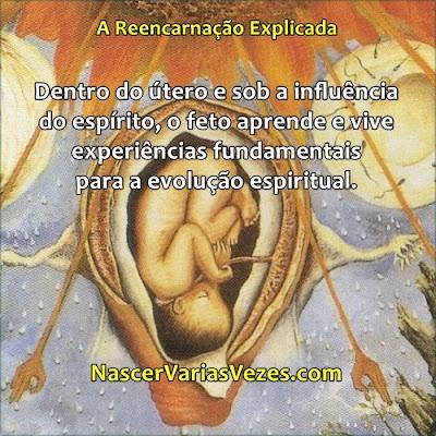 Dentro do útero e sob a influência do espírito, o feto aprende e vive experiências fundamentais para a evolução espiritual. Livro Nascer Várias Vezes - A Reencarnação Explicada