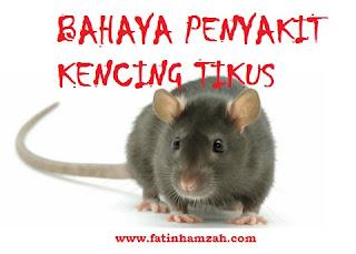 bahaya-kencing-tikus