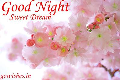Good night wishes Image wallpaperToday 13-12-2018