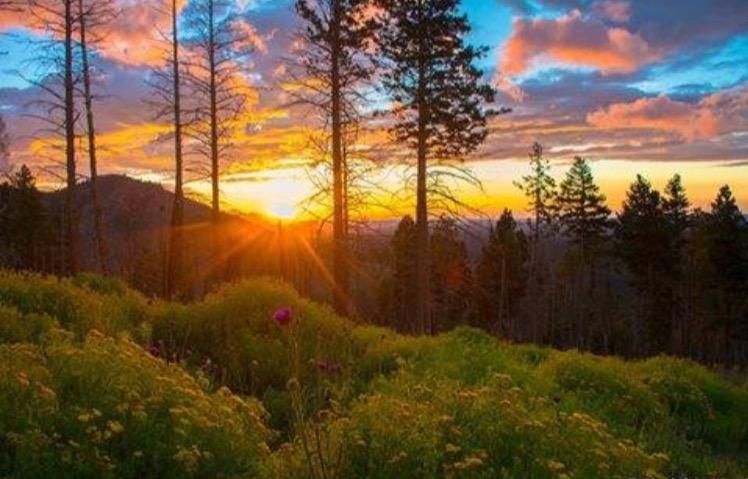 This Colorful Life Ruidoso New Mexico Mountain Life