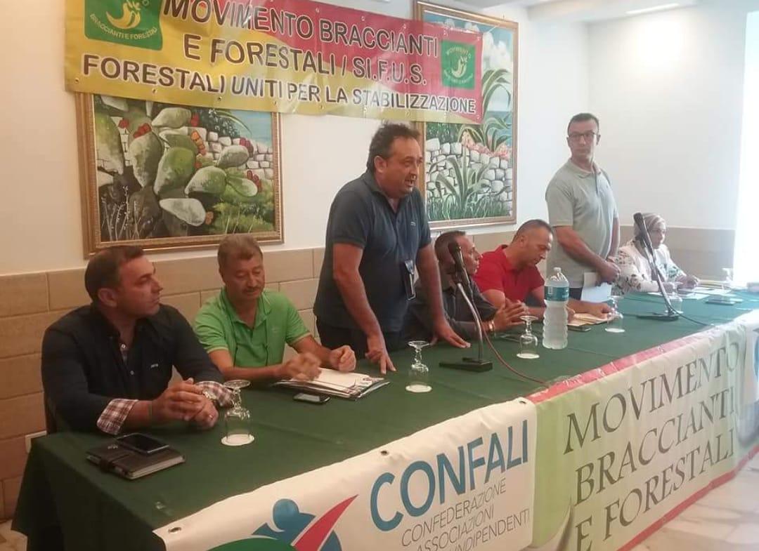 Vivaio Forestale Sicilia : Forestali news fuga dal pd si spacca il partito in sicilia