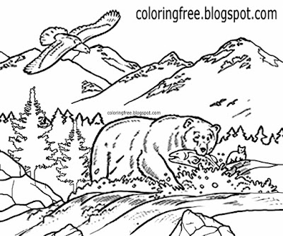 Canadian Grizzly bear fishing in a river Canada countryside wildlife coloring book page for children